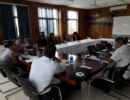 Capacity Building Support to the Melanesian Spearhead Group Secretariat (MSG) and to Enhance the Efficiency of the Region's Trade Facilitation Services